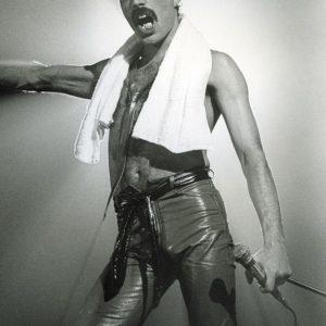 Comprar Queen Freddie Mercury Póster standard